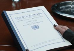 sokovia accords.png