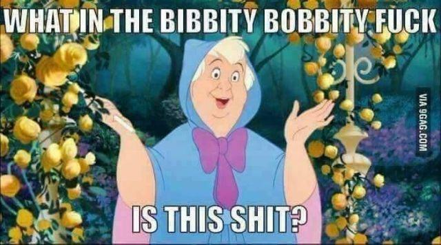 Bibbity Bobbity